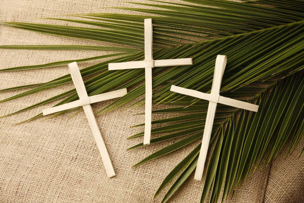 Palm Sunday Crosses and Branches