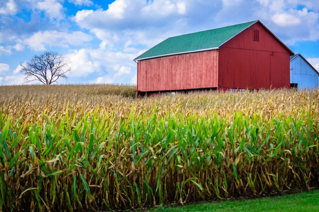 Barn off Route 43, in the area of Hartville / Suffield, Ohio, October, 2017.